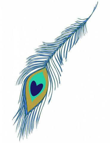 peacock feather gif